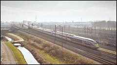 20180208 Eurostar 4032/4031, Rotterdam Lombardijen (9114)