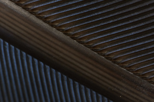 Bird feather abstract