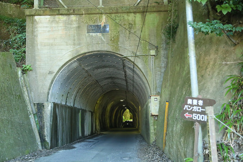 向山トンネル(共栄トンネル)
