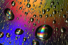 Water drops on colour