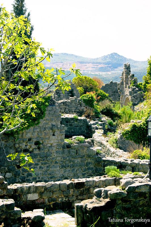 Вид на старобарские руины