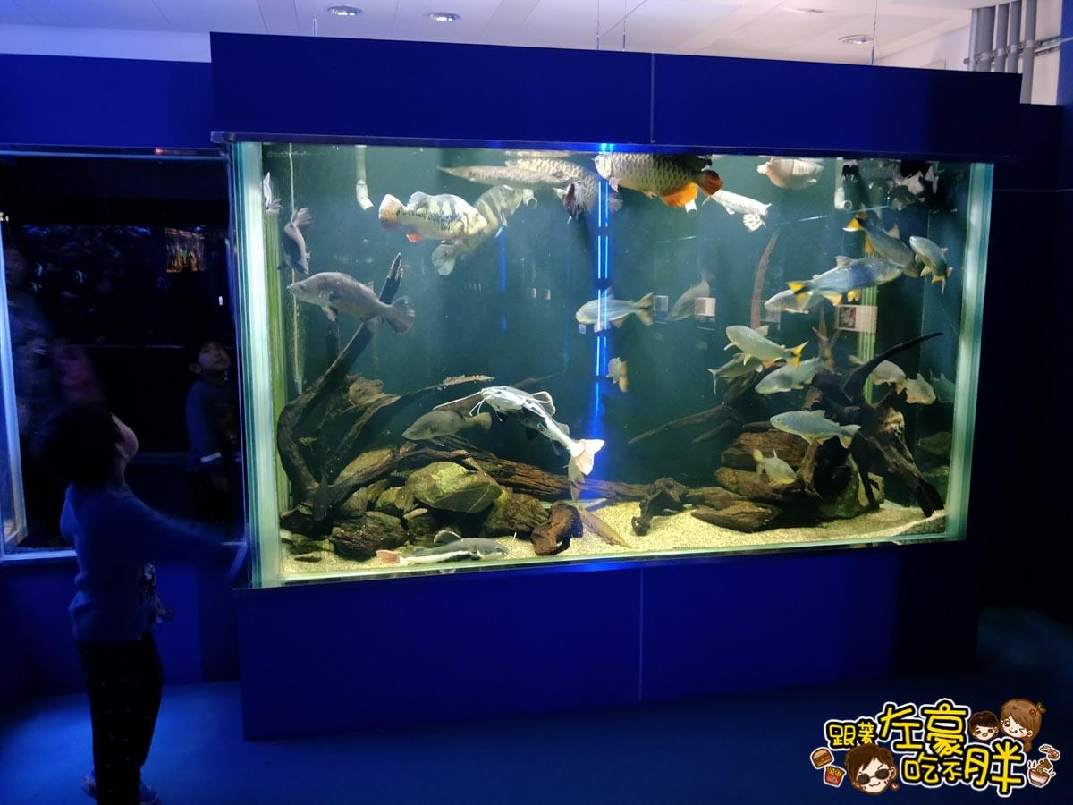 屏東生技園區國際級水族展示廳-32