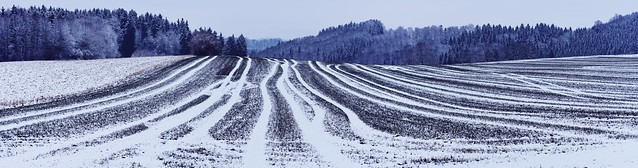 Winter fields near Ravensburg, Baden-Württemberg, Germany