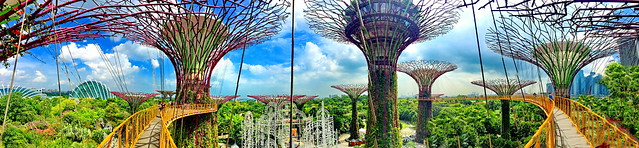 HFF! Elevated walkway in Singapore's Supertree Grove at Gardens by the Bay (+5)