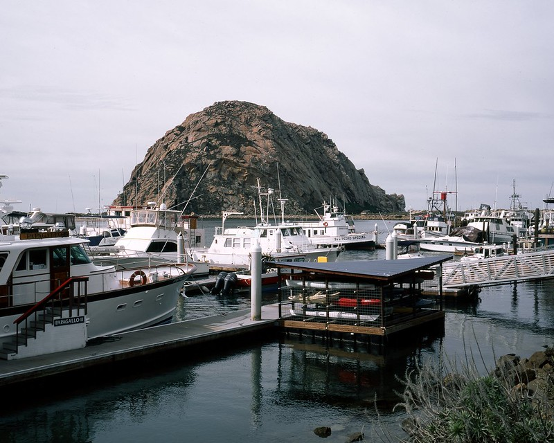 Docks and Rock