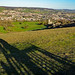 Shadows on Selsley Common