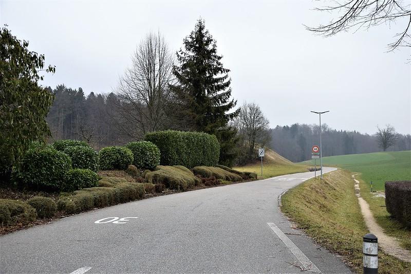 Feldbrunnen village 09.01 (13)