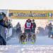Sat, 02/03/2018 - 11:35 - Yukon Quest 2018 - Julien Schroder