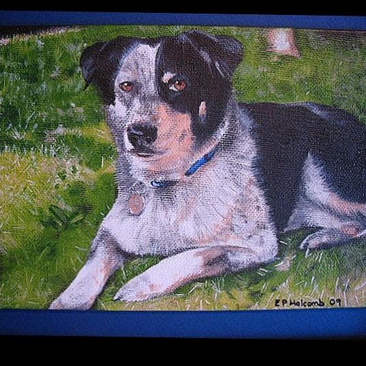 #tbt: my portrait of my mom's dog Abbie, 2009. Abbie was a great dog!