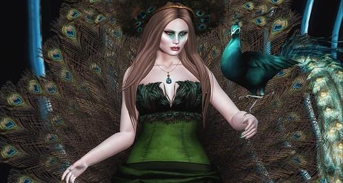 Empress Peacock