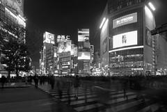 Shibuya Night Scramble (Tokyo)