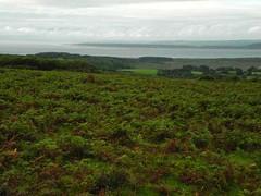 Llanmadoc Hill and Tankey Lake Moor web