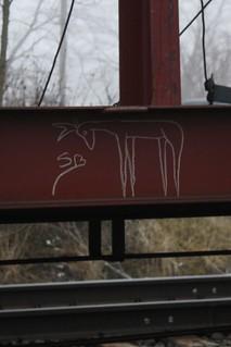 Deer SB