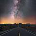 Forest Gump Highway by Wayne Pinkston