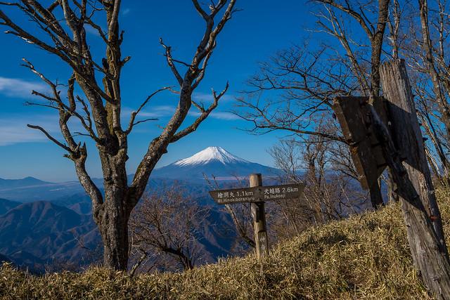 主稜線着・・・富士山のお出迎え