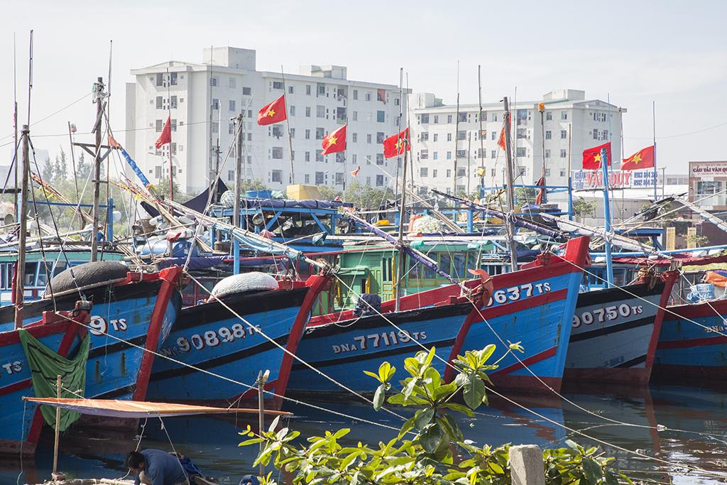 Fishing fleet,Da Nang  Vietnam