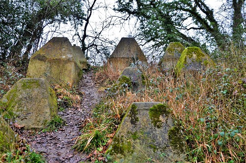 Dragons Teeth, Crookham Wharf