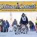 Sat, 02/03/2018 - 11:49 - Yukon Quest 2018 - Julien Schroder