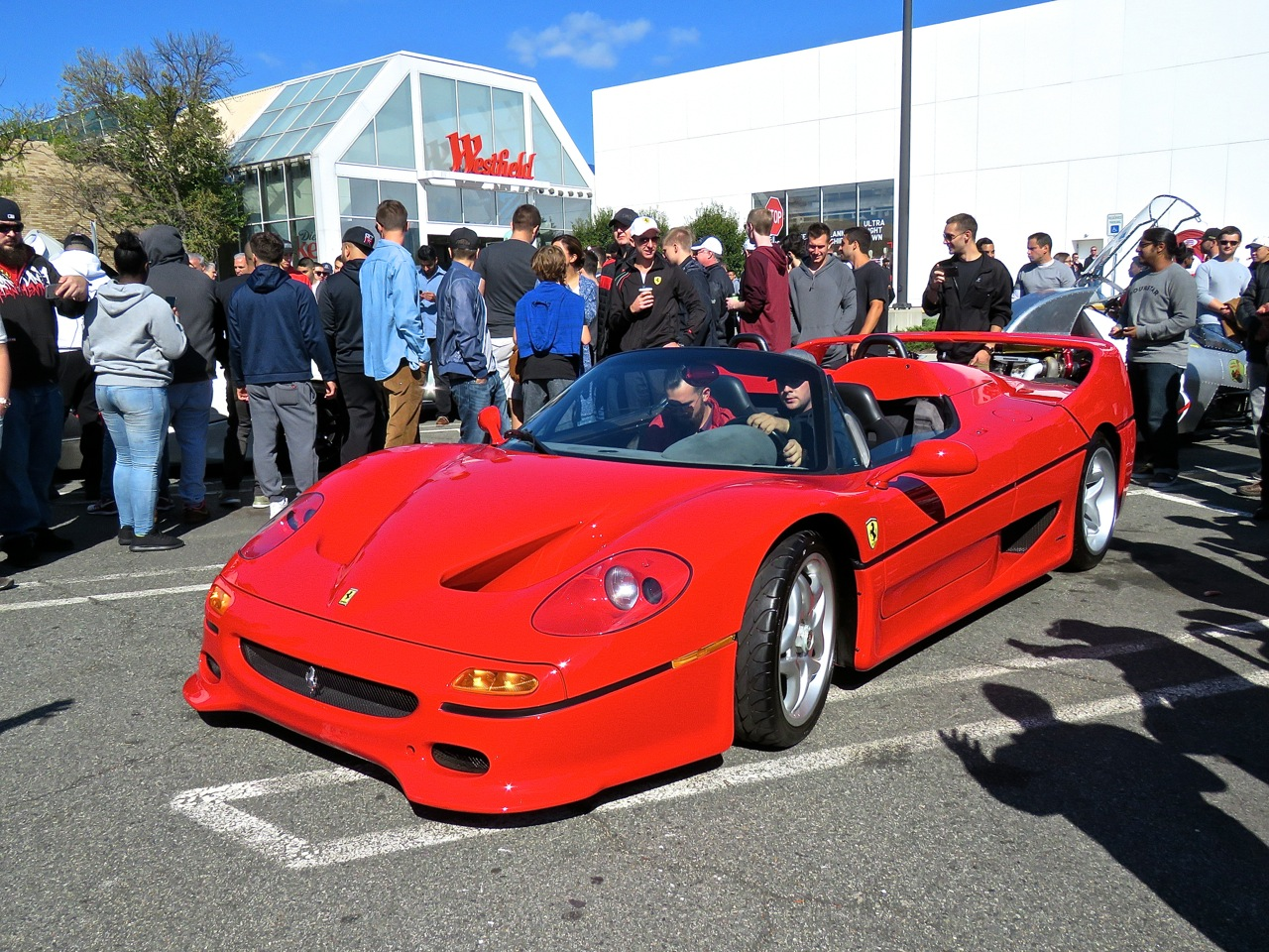 Ferrari F50 Cars and Caffe 1
