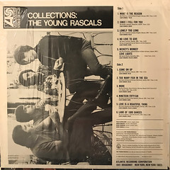 THE YOUNG RASCALS:COLLECTIONS(JACKET B)