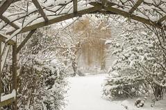 Essex Southend Priory Park