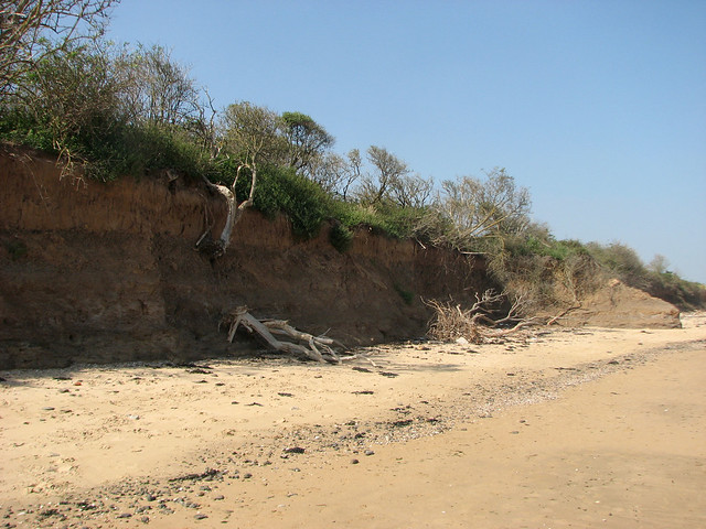 The coast at the Naze, Walton-on-the-Naze