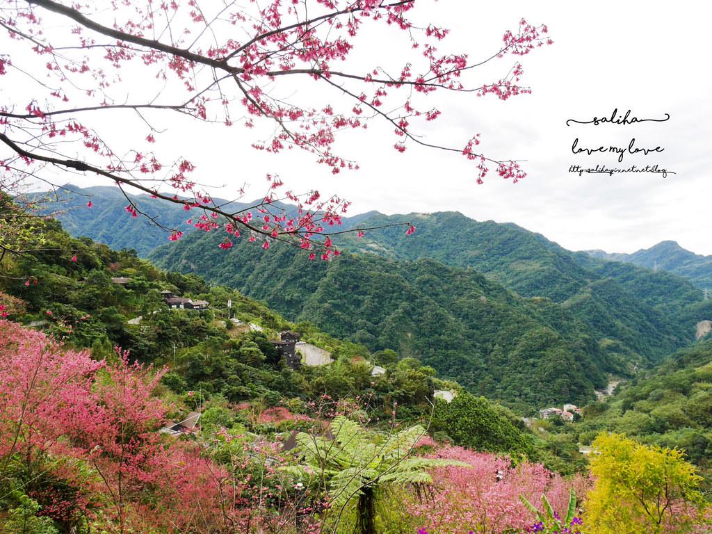 三峽一日遊景觀餐廳推薦花岩山林 (39)