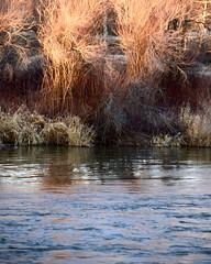 A River Flows Through... 作者 ~~J