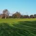 Hurtmore Golf Course-E2010084
