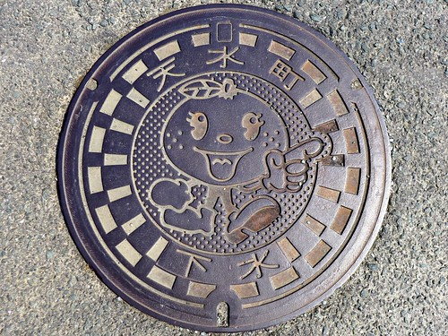 Tensui Kumamoto, manhole cover (熊本県天水町のマンホール)