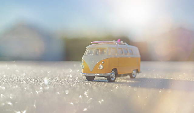 A Frosty Adventure...