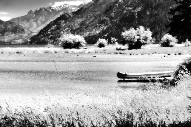 A Minimalist Look to a Setting Along Lake Chelan (Black & White, North Cascades National Park Service Complex)