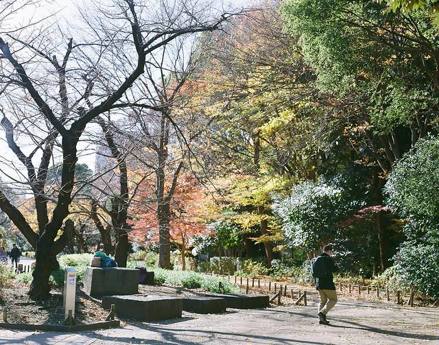 A Glimpse of Tokyo 一眼東京