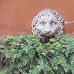 2018 Palazzo Maccarani Odescalchi, cortile, Piazza Margana 19 n - https://www.flickr.com/people/35155107@N08/