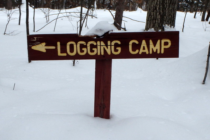 Wood sign with carved, painted letters that say logging camp, with an arrow pointing left.