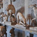 Musei Vaticani - https://www.flickr.com/people/132466470@N05/