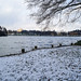 White Wollaton Lake