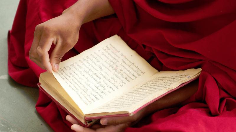 Lima universitas dan satu institut terkemuka ambil bagian dari jaringan global untuk mengkaji Agama Buddha dan kebudayaan Asia Timur.