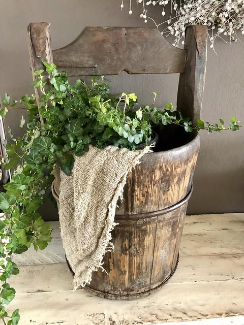 Emmer linnen doek plant