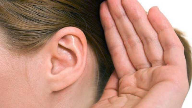 Fakta tentang telinga