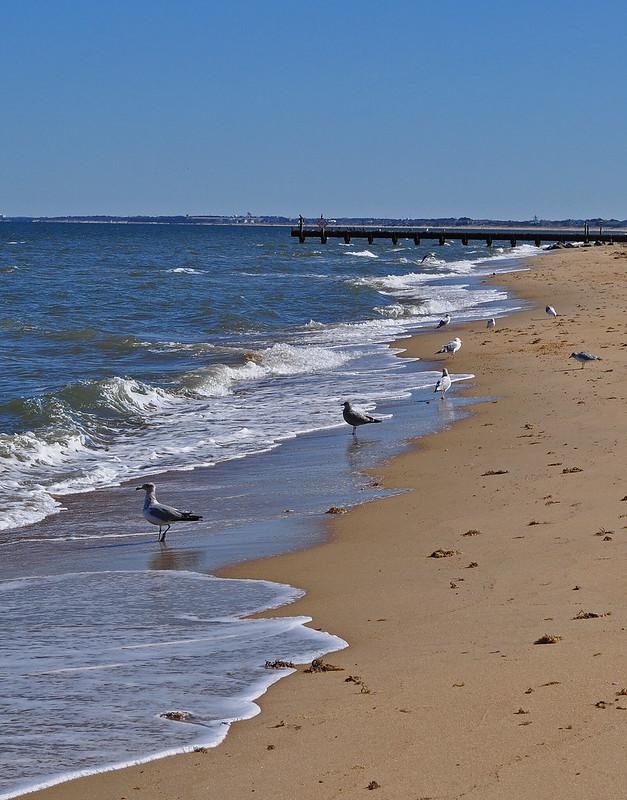 Ocean View Beach (2)