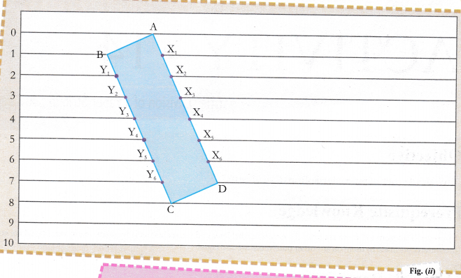 cbse-class-9-maths-lab-manual-division-of-a-paper-strip-in-equal-parts-2