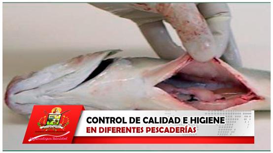 control-de-calidad-e-higiene-en-diferentes-pescaderias