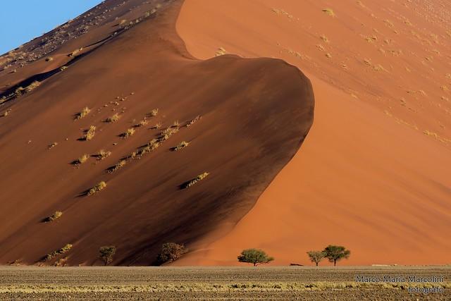 Monster dune