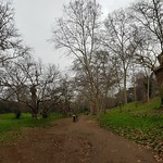Rome 2018 - Pincian Hill and Gardens - https://www.flickr.com/people/21343347@N03/
