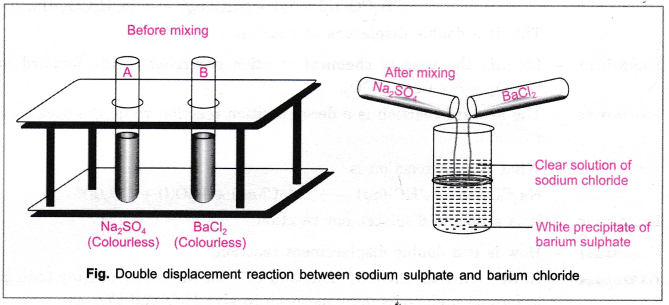 cbse-class-10-science-practical-skills-types-of-reactions-13