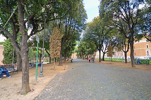 Piazza dei Tribunal
