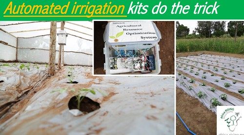 automated irrigation kits - Africa RISING.