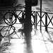 After the rain | Hemingway's Paris-35