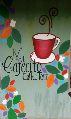 Mi Cafecito: A Coffee Tour for a Tea Lover